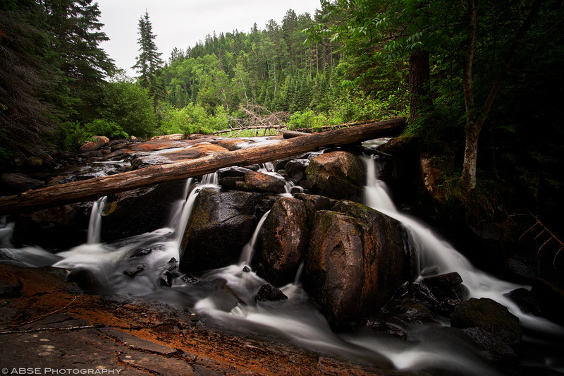 http://blog.absephotography.com/wp-content/uploads/2018/07/algonquin-ontario-canada-water-long-exposure-forest-2018-800x533.jpg